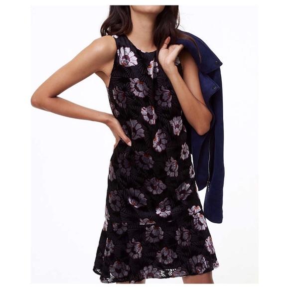 81de71d30c10 LOFT Dresses | Iced Floral Velvet Swing Dress | Poshmark